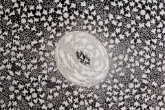 torus 110x110 acryilic on canvas1